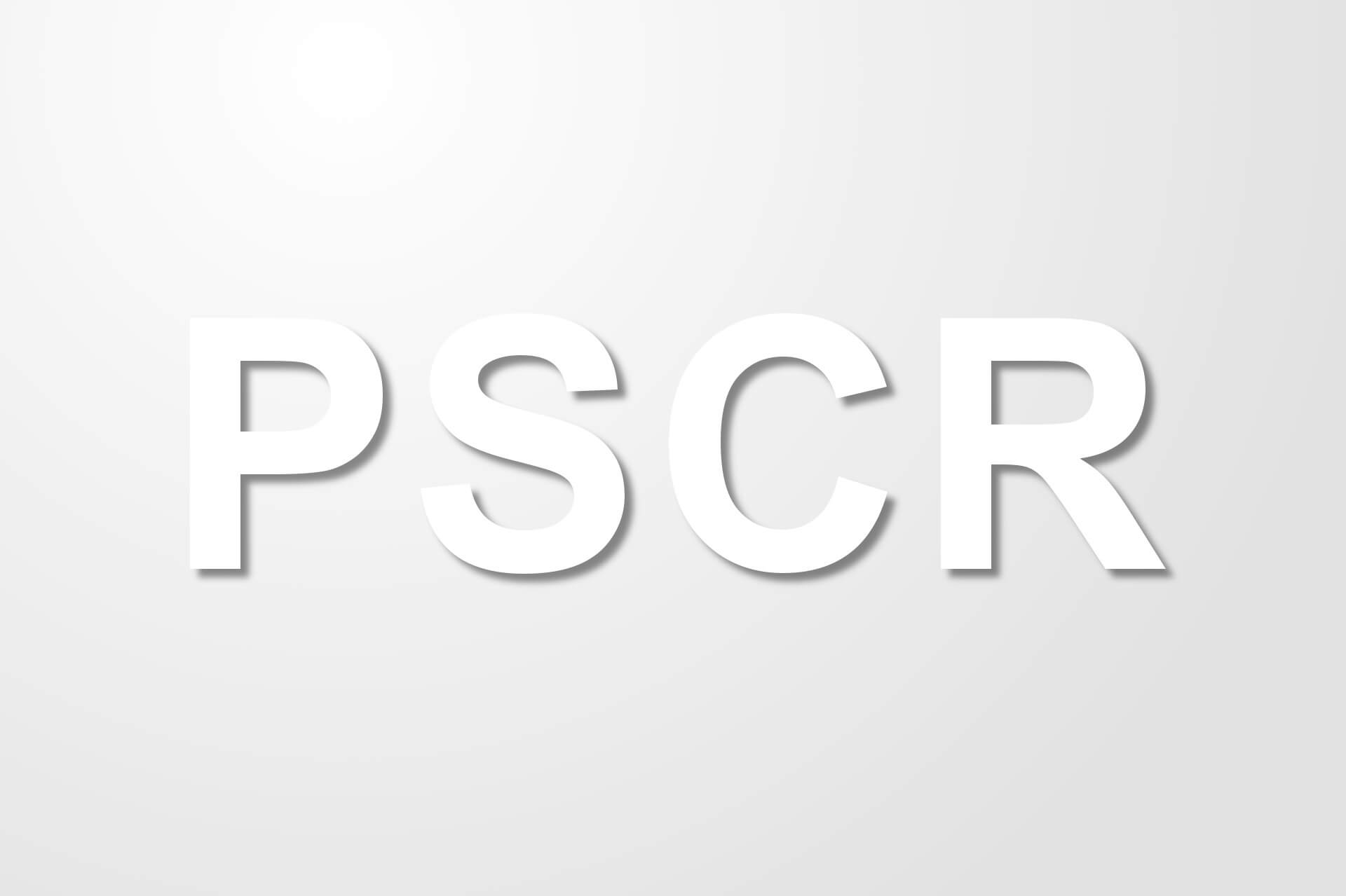Representante de seguridad y conformidad de producto (PSCR)